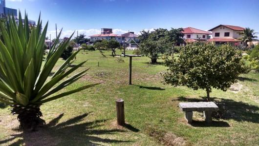 Praça das corujas-buraqueiras - Mariscal