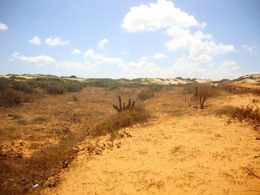 Seca no Nordeste Praia de Lagoinha