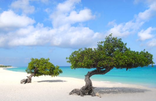Férias de julho no Caribe 2019 - Aruba