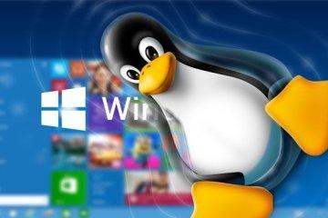 Como crear un usb de instalación de Windows 10 desde Linux