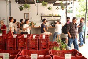Instituto Feira Livre distribui orgânicos a preço justo no centro de São Paulo