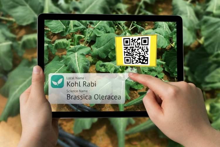 Realidade aumentada chega à agricultura para melhorar produção