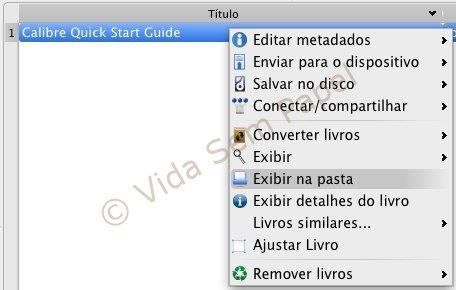 Calibre - conversão de ebooks 09