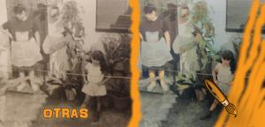 otras_patio__plantas