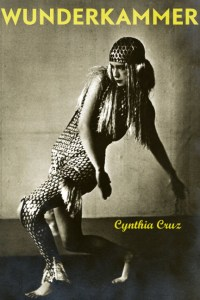 Cynthia Cruz Book Cover Wunderkammer