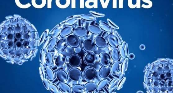 IMPORTANTE: Precauciones a adoptar contra el  Coronavirus