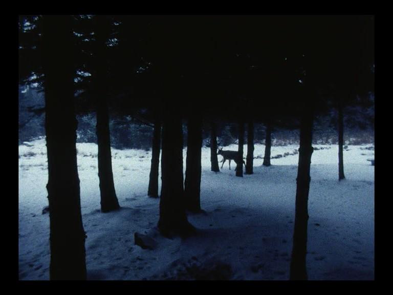 09-landscape+suicide2
