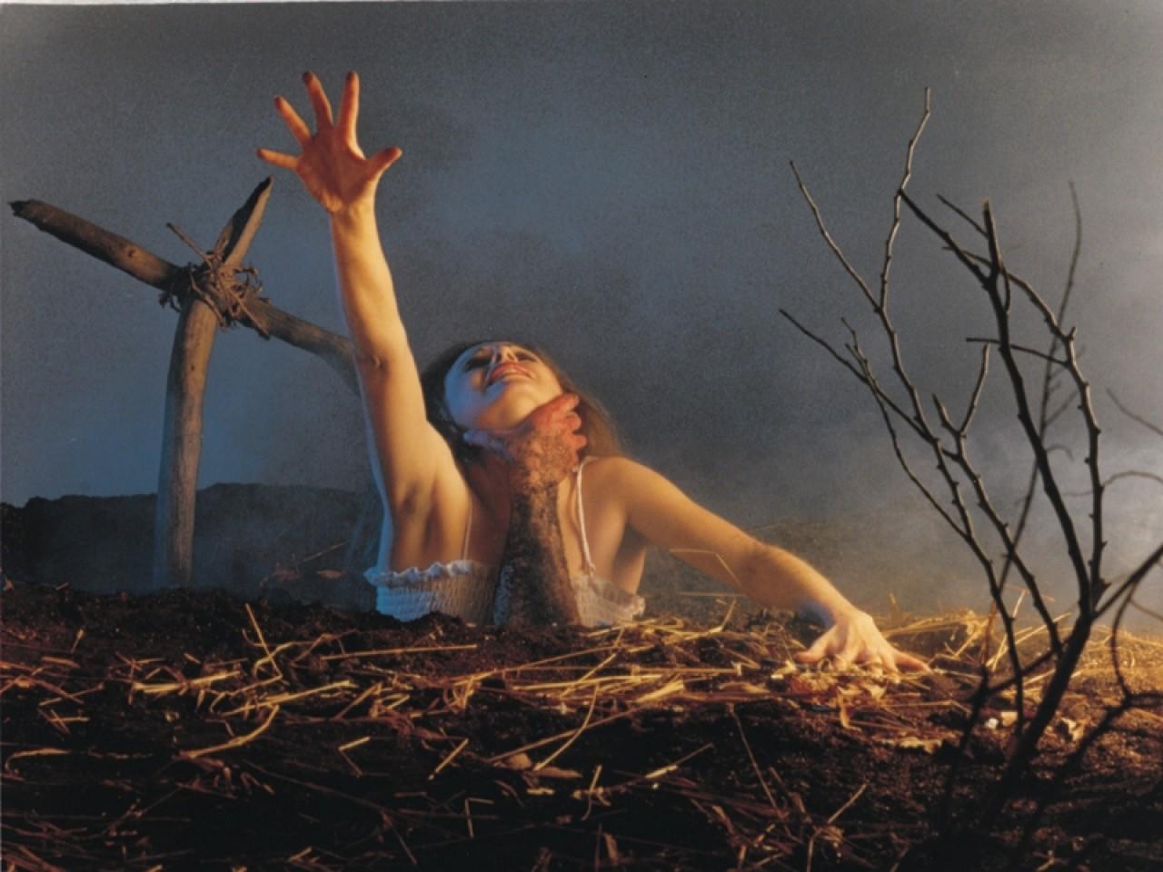 Evil dead – Sam Raimi