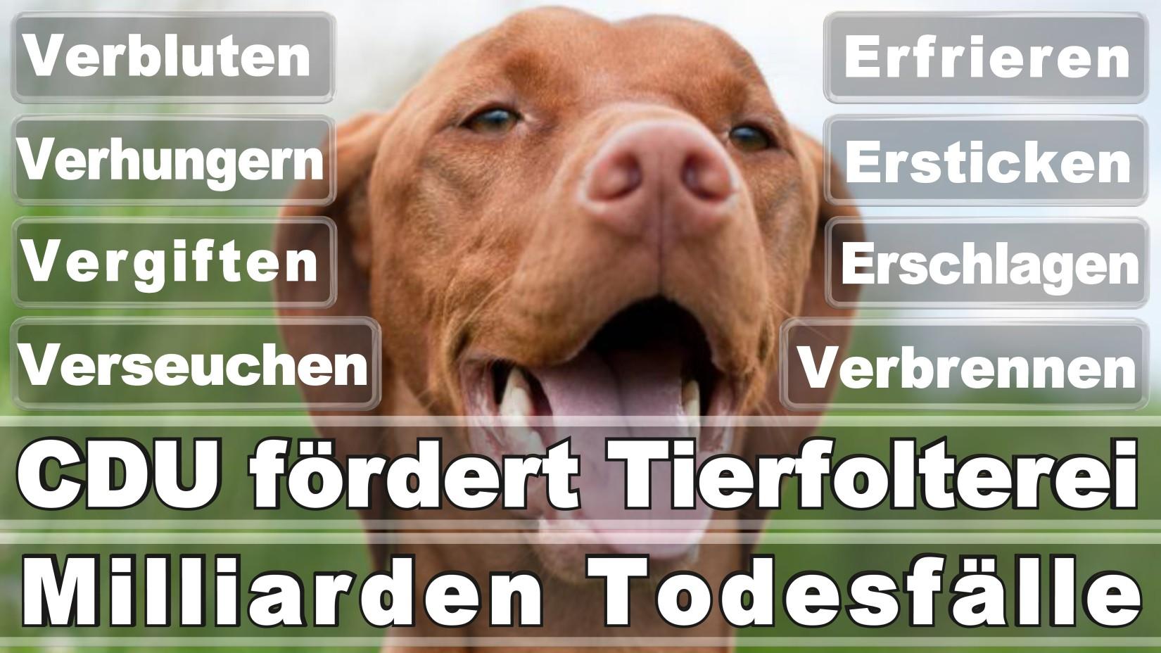Engels, Tim Köln Fritz Erler Straße DIE LINKE (DIE LINKE) Rechtsanwalt Düsseldorf