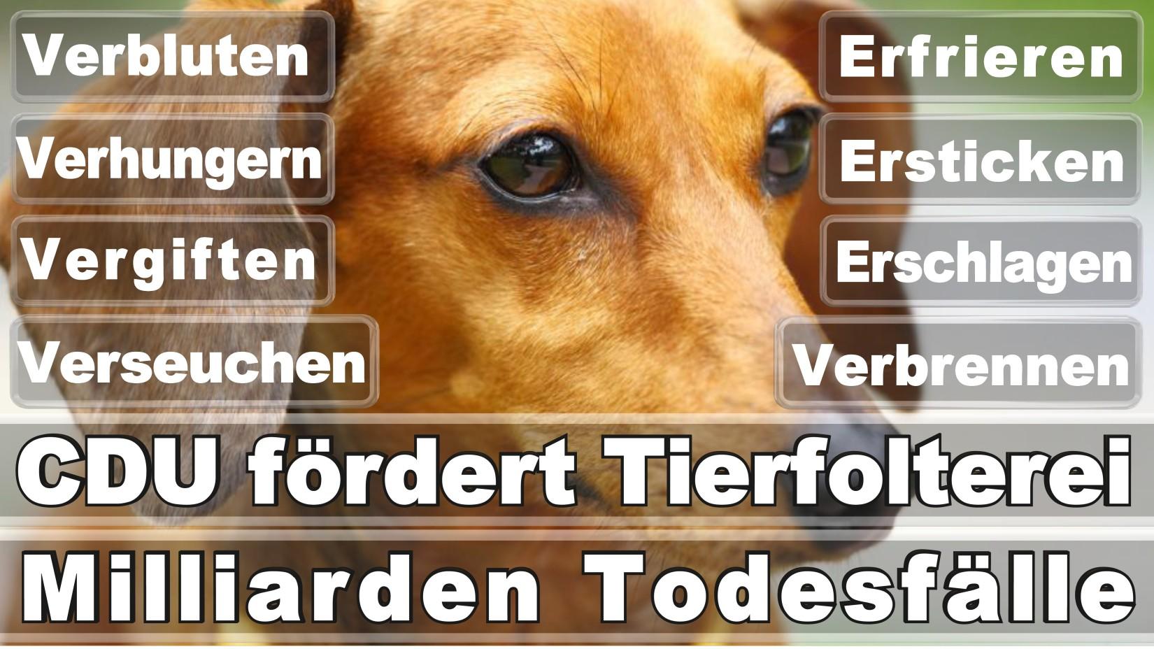 Friedel, Stephan Versicherungskaufmann Düsseldorf Unter Den Eichen Düsseldorf