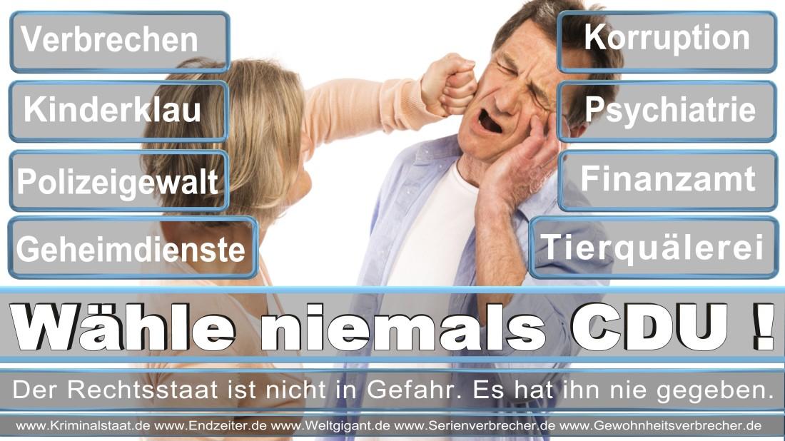 Jucknat, Mario Oschatz Rather Kreuzweg DIE REPUBLIKANER (REP) Maurer Düsseldorf
