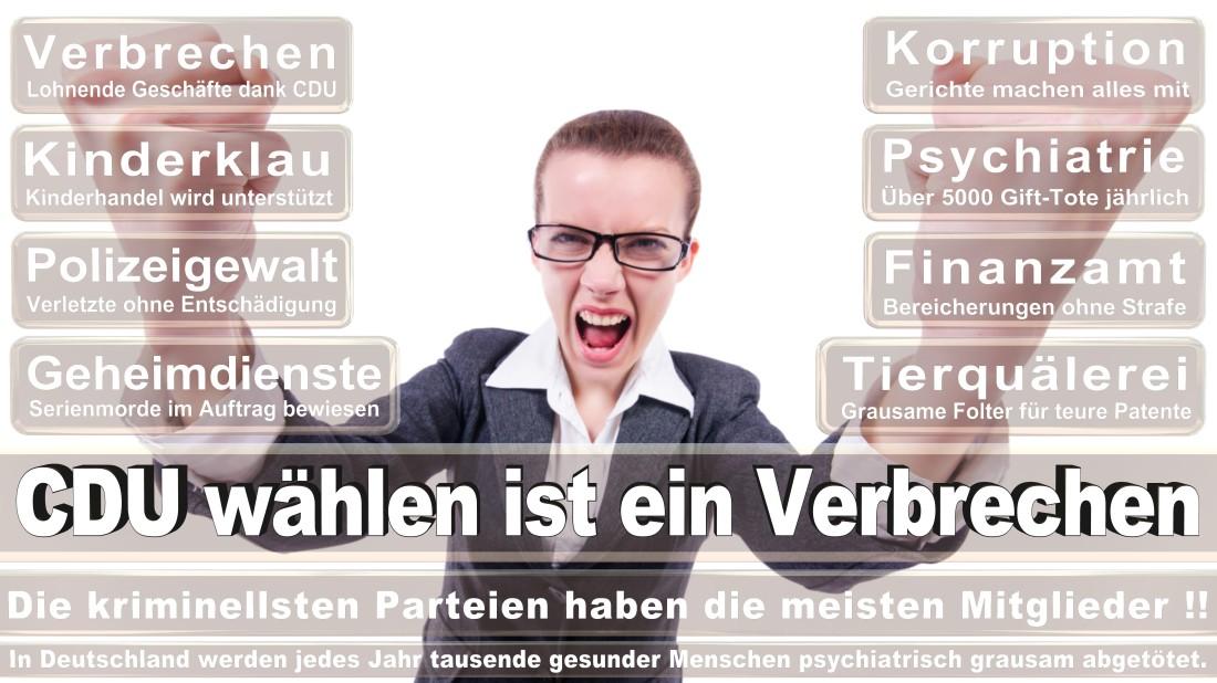 Theine Dimt, Michael IT Servicemanager Düsseldorf Bergische Landstraße Piratenpartei Deutschland (PIRATEN Düsseldorf )