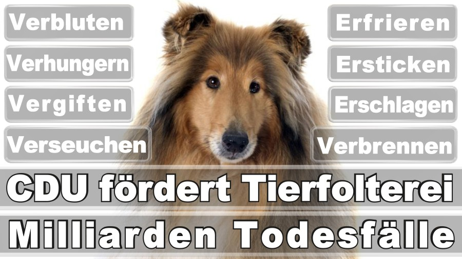 Weiß, Holger Abgeordnetenmitarbeiter Düsseldorf Robert Hansen Straße Piratenpartei Deutschland Düsseldorf (PIRATEN)
