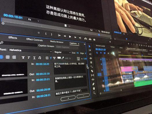 Captions in Premiere Pro - VIDEOLANE ▶︎▶︎