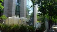 Videonauts Indien Business Trip Pune O Hotel