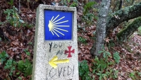 November_Camino38