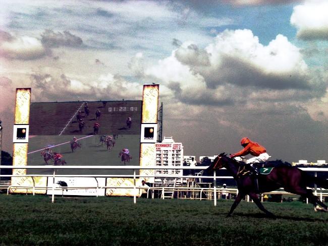 Videonauts Pune - Royal Western India Turf Club Pferderennen