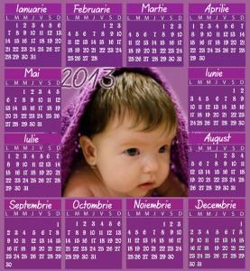 Calendare 2013 personalizate