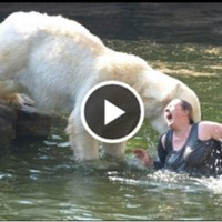 White Bear Attacking a Woman in Lake