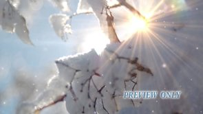 Snow And Sun Flare Winter Background