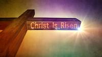 Still: Jesus Is Risen