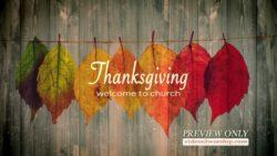Still: Thanksgiving