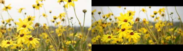 VideoEditingFilmLook6comparison