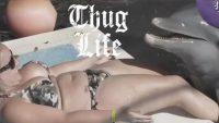 Vídeos Whatsapp Thug Life Versão de Animais