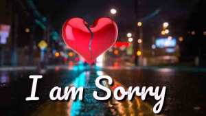 Im sorry whatsapp status video for love emotional status Nadaan chhora