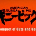 American Guinea Pig: Bouquet of Guts and Gore