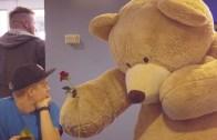 A Giant Bear Just Wants To Hug
