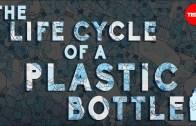 The Dangers Of Throwing Away Plastic