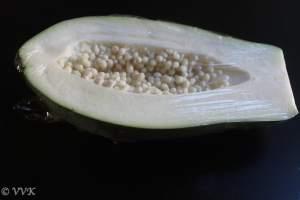 RawPapaya