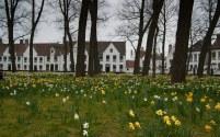 Briž, Beguinage - Brugge, Beguinage