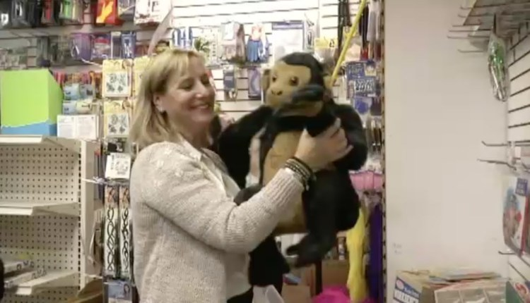 Woman Buys Entire Toys From Toy Store For Donation