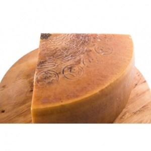 parmigiano reggiano vacche rosse razza reggiana stag oltre 30 mesi stravecchio 1 8 di forma da 35 a062 1
