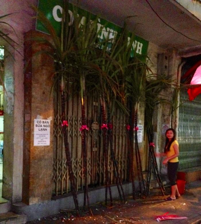 tet sugar cane
