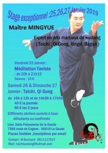 stage d'art martiaux dirigé par maître Minghué le 25,26,27 janvier