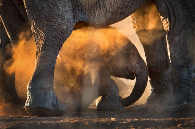 Dusty Day by kdooley - The Wonders of the World Photo Contest