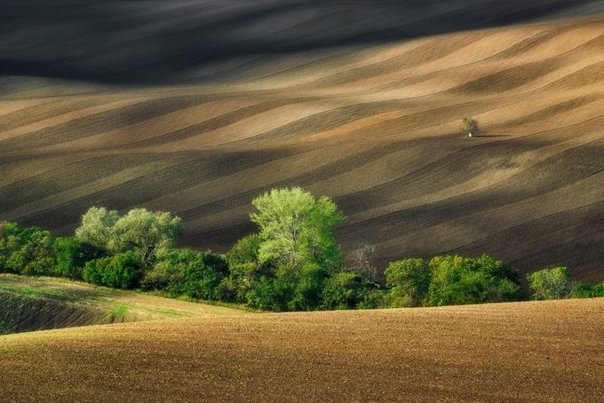 Lines and shadows by QubaKpl - The Wonders of the World Photo Contest