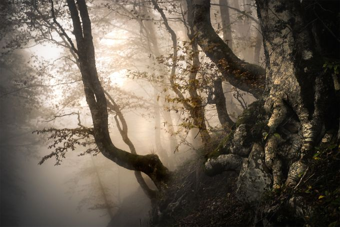 mist by gennaroruggiero - The Wonders of the World Photo Contest