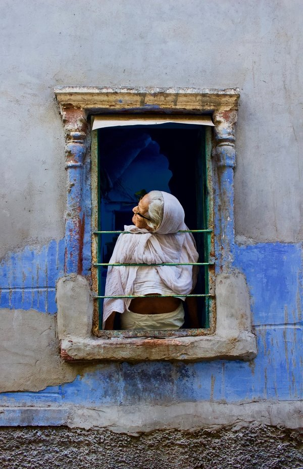 Watching Out the Window by gregsutton - The Blue Color Photo Contest 2018