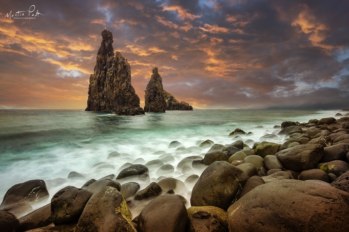 Standing strong by martinpodt - Monthly Pro Photo Contest Vol 45