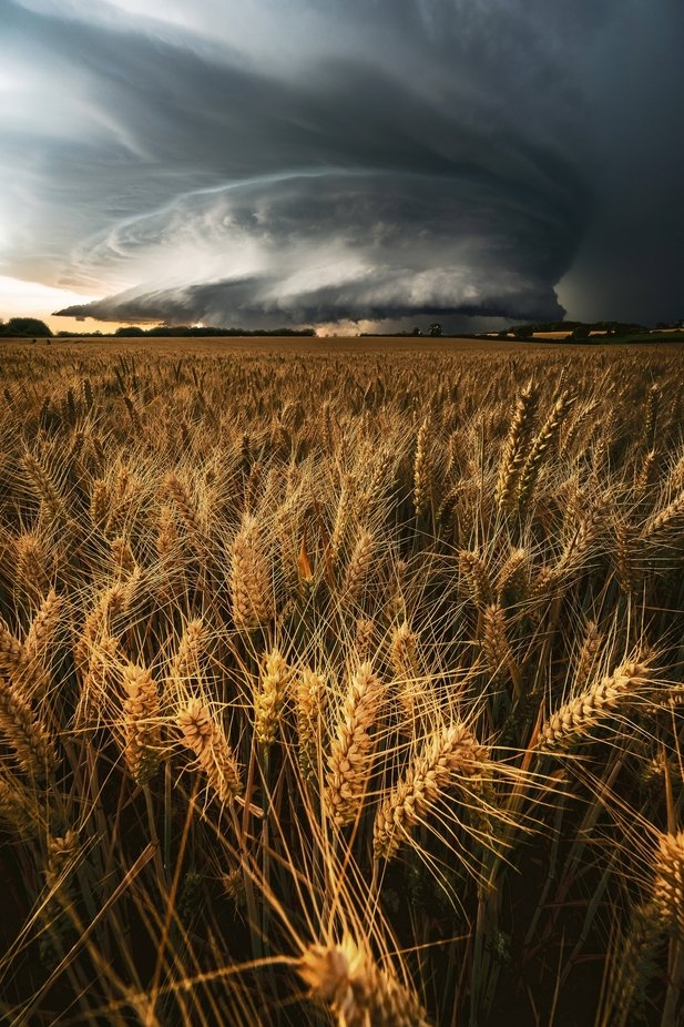 the storm  by Selaru2015 - Image Of The Month Photo Contest Vol 37