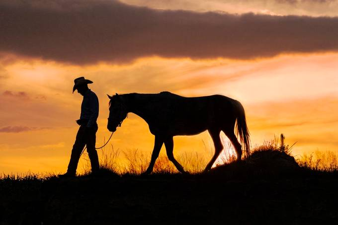 A cowboy and his horse by SJRatcliffe - Monthly Pro Photo Contest Vol 45