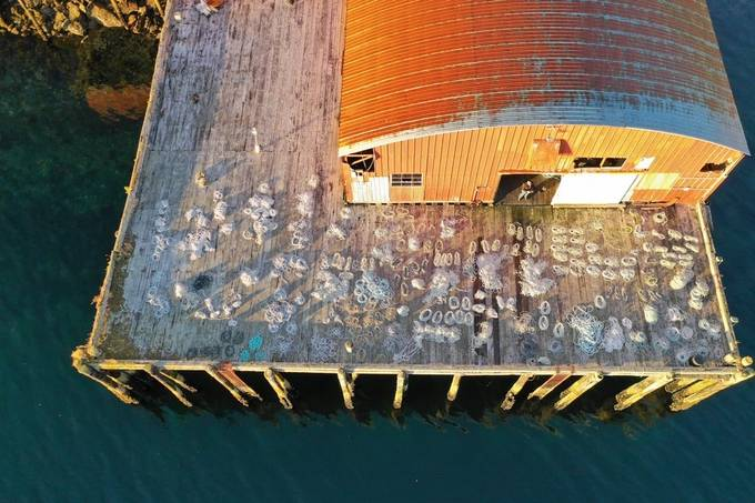 Sorting Line on the Dock by Nealieo - Image Of The Month Photo Contest Vol 37
