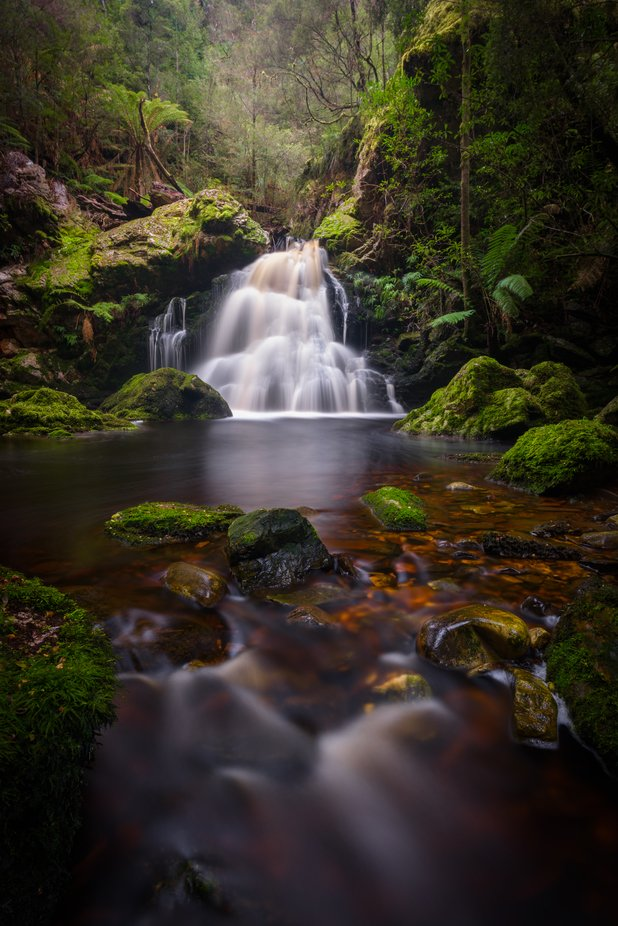 Southern Spring by jamierichey - Monthly Pro Photo Contest Vol 45