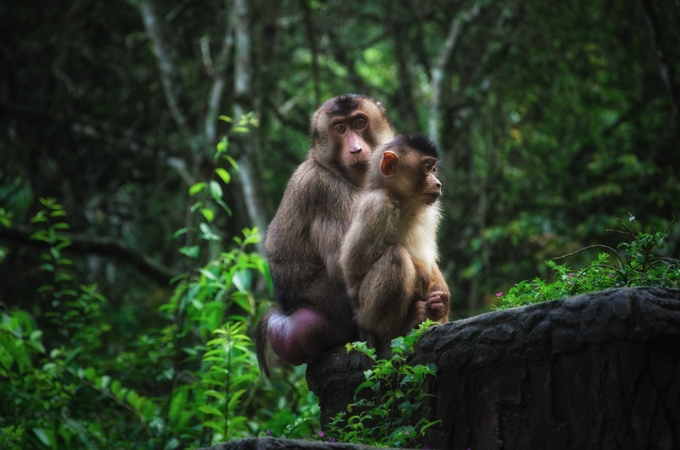 family bonds by kellyrenee - Monthly Pro Photo Contest Vol 45