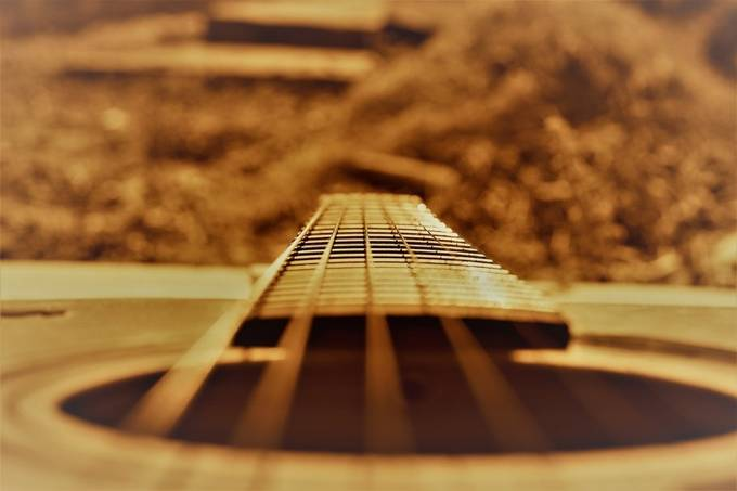 life on a string by mattiasam - Shallow Depth Photo Contest