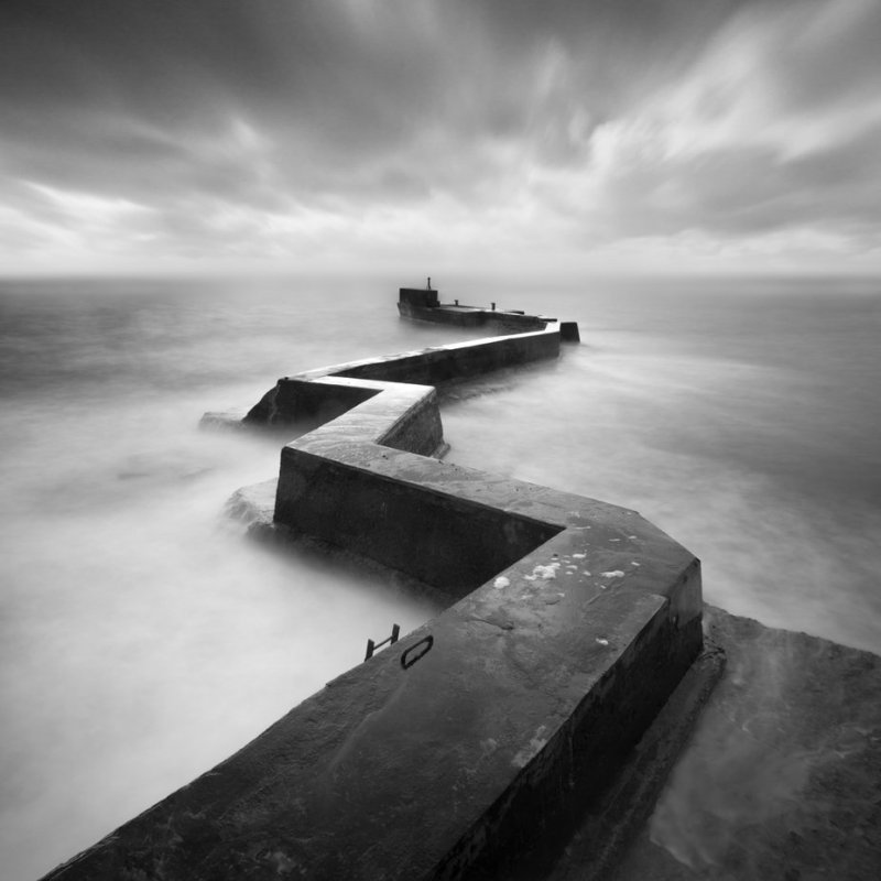 Wayward by ianmountford - Image Of The Month Photo Contest Vol 43